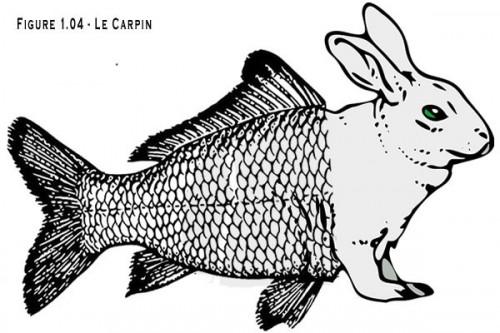 le_carpin.jpg