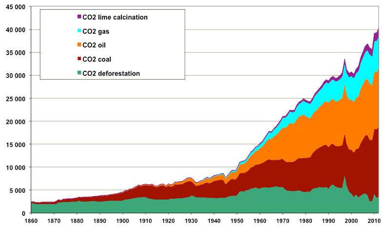 Asphyxiées par les activités humaines, les forêts ne digèrent plus le CO2