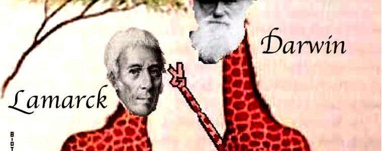 Autodestruction de l'espèce : de Lamarck avait tout prévu en 1820