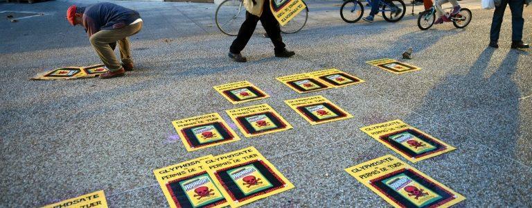 UE : le glyphosate, « cancérogène probable », ré-autorisé pour cinq ans