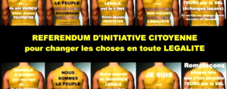 Un Référendum d'initiative citoyenne est impensable avant le départ du président Macron