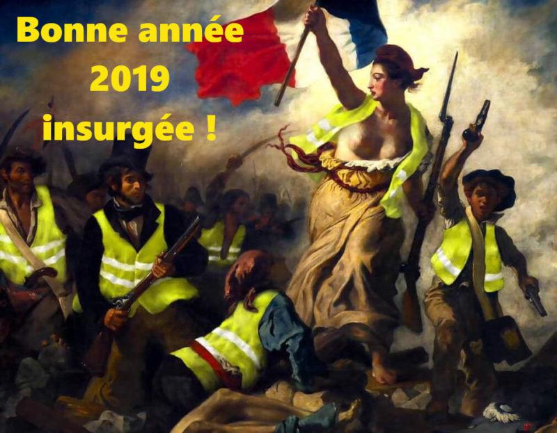Vœux 2019 : que la 5e République ne passe           pas l'été !