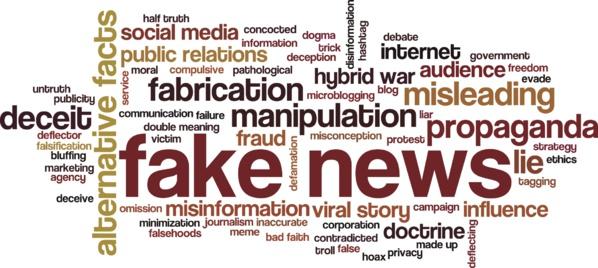 Loi anti-fake news : panique et impuissance du microcosme médiatico-politique