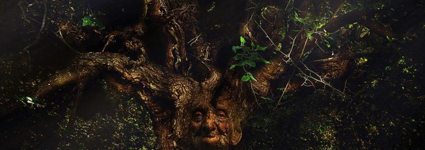 Yggdrasil, l'Arbre Monde, nouveau magazine sur l'effondrement