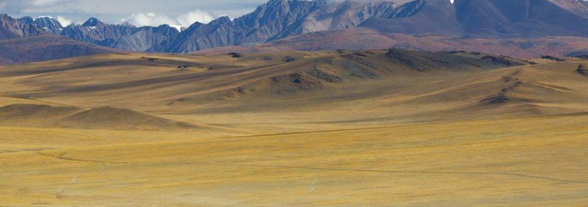 Le Grand jeu : pendant ce temps, dans la steppe…