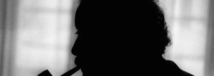 «Il ne me déplaît pas de déplaire à certains» (Georges Brassens)